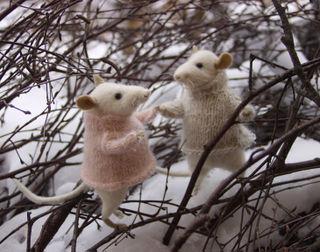 Mice_tree