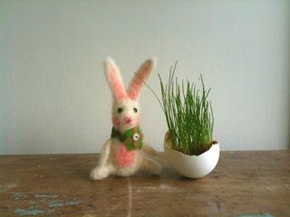 H_egggrass