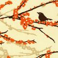 Birds_dewberry
